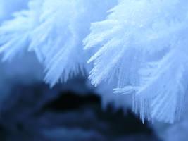 ice by memysandi