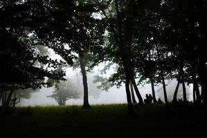 mist II by memysandi