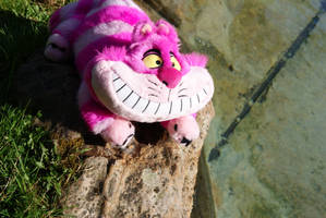 Cheshire Cat by DevilKaito