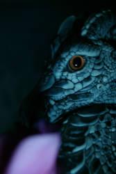 dragon's Eye by DevilKaito