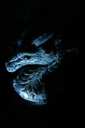 dragon in the dark by DevilKaito