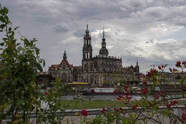 Dresden at late summer by poppynka