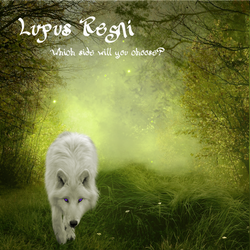 Lupus Regni - light wolf in meadow