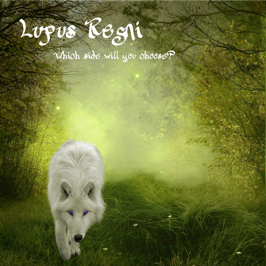 Lupus Regni - light wolf in meadow by RahlaWolf
