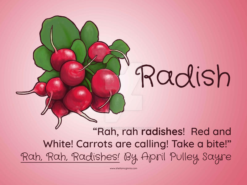 Radish by SheilaSunshine
