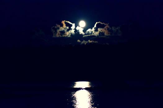 those wonderful northern nights