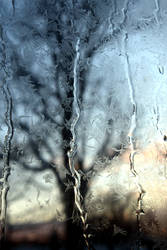 View through a frosty window
