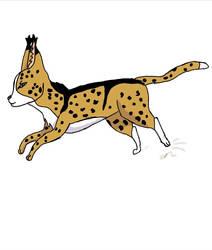 Leopardstripe