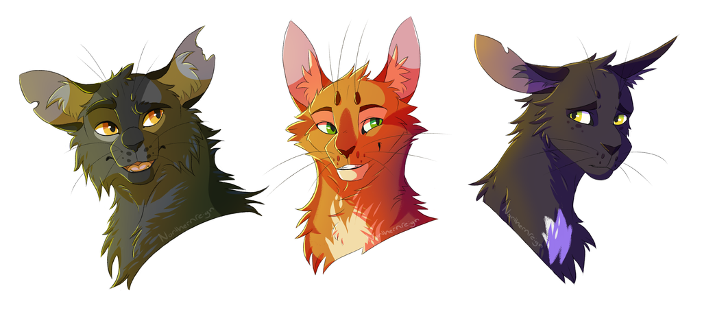 Warriors Cats Firestar