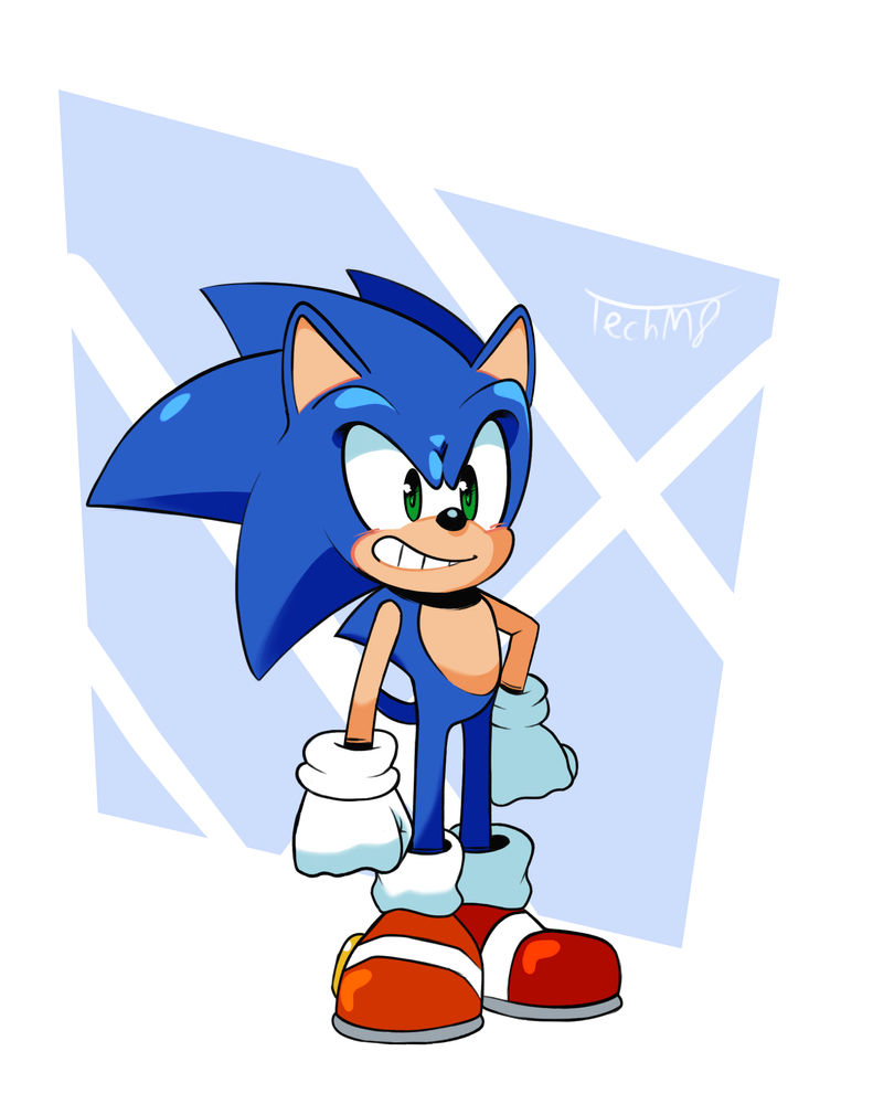 Sonic The Hedgehog by TechM8
