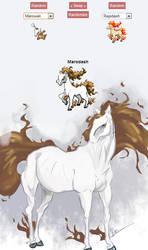 Marodash