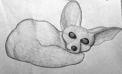 Fennec fox by KuriTails