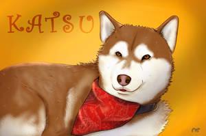 Katsu by Ko12n