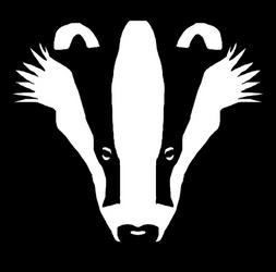 Stinking Badger