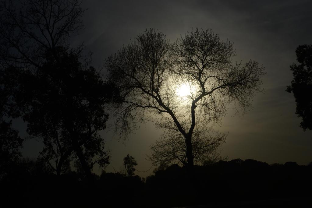 Dimnishing Sunlight 2 by techparasar