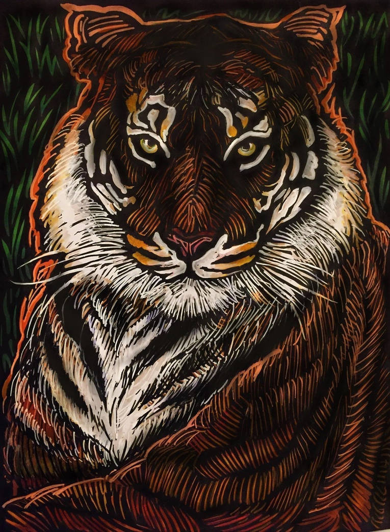 Tiger - Single Strokes