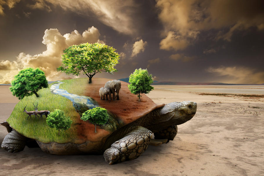 the earth on turtles back
