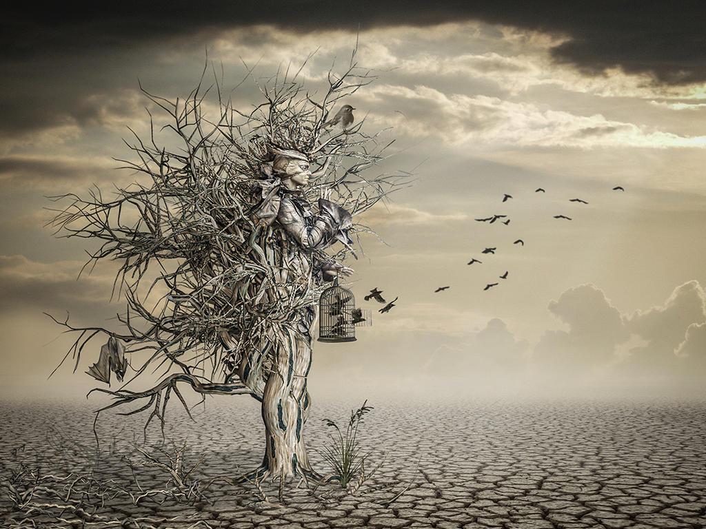 The desert lives by SuicideOmen
