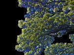 Tree Corner PNG