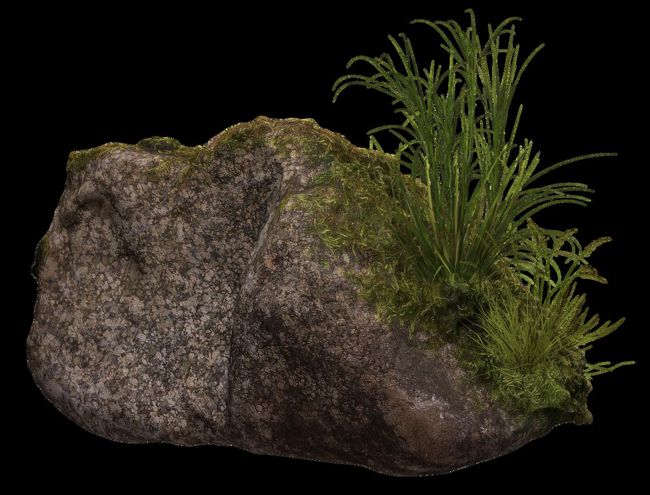 Mossy Rock II