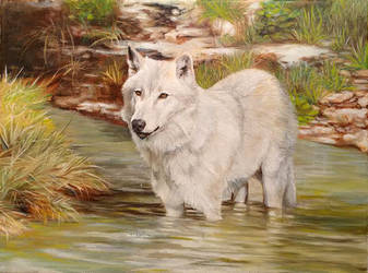 Going With The Flow - Wolf