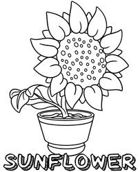 Printable flower coloring page by Topcoloringpages
