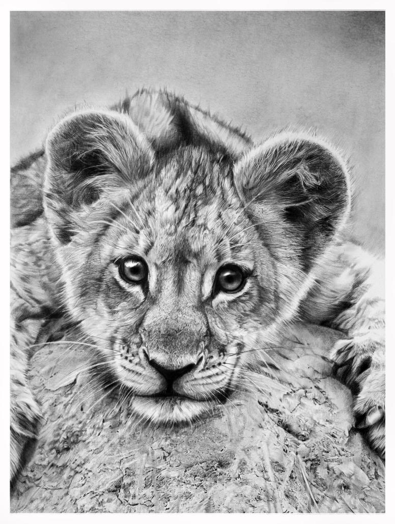 little lion by francoclun
