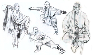 Shaolin Monk Studies