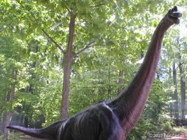 brachiosaurus by Carnosaur