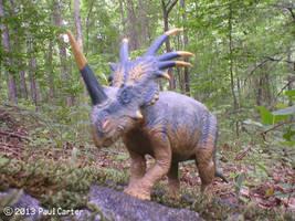 Styracosaurus by Carnosaur