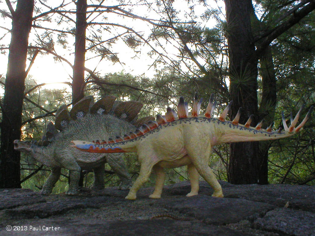 Miragaia and Stegosaurus by Carnosaur
