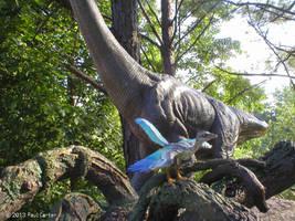 Archaeopteryx by Carnosaur