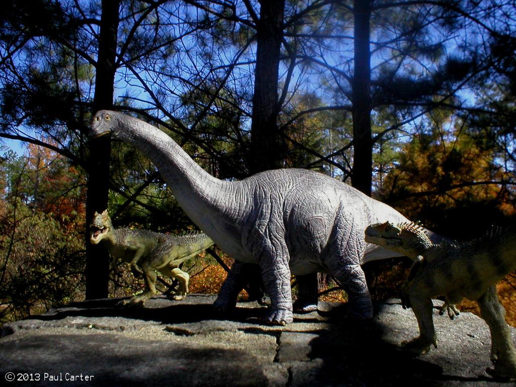 Allosaurus VS Apatosaurus by Carnosaur on DeviantArt