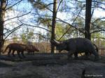 Andrewsarchus VS Arsinoitherium