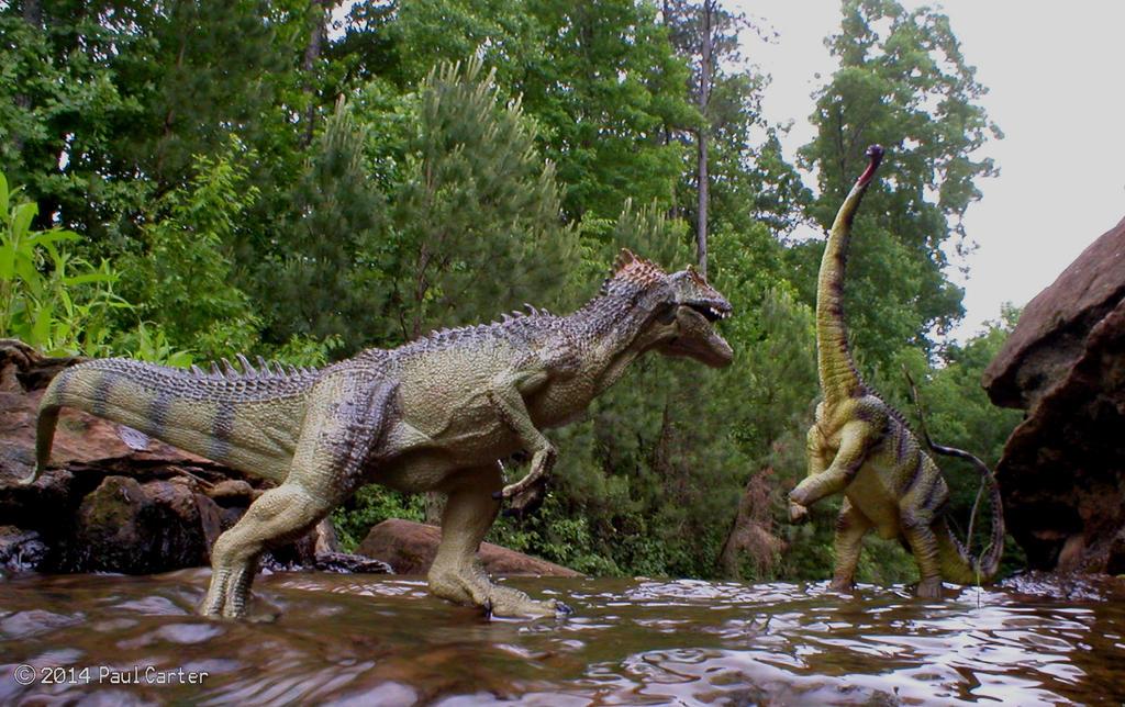 Allosaurus VS Diplodoc...