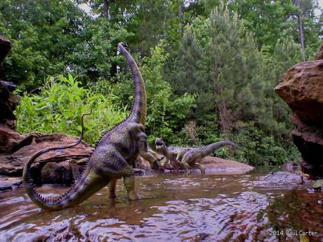 Allosaurus VS Diplodocus 2