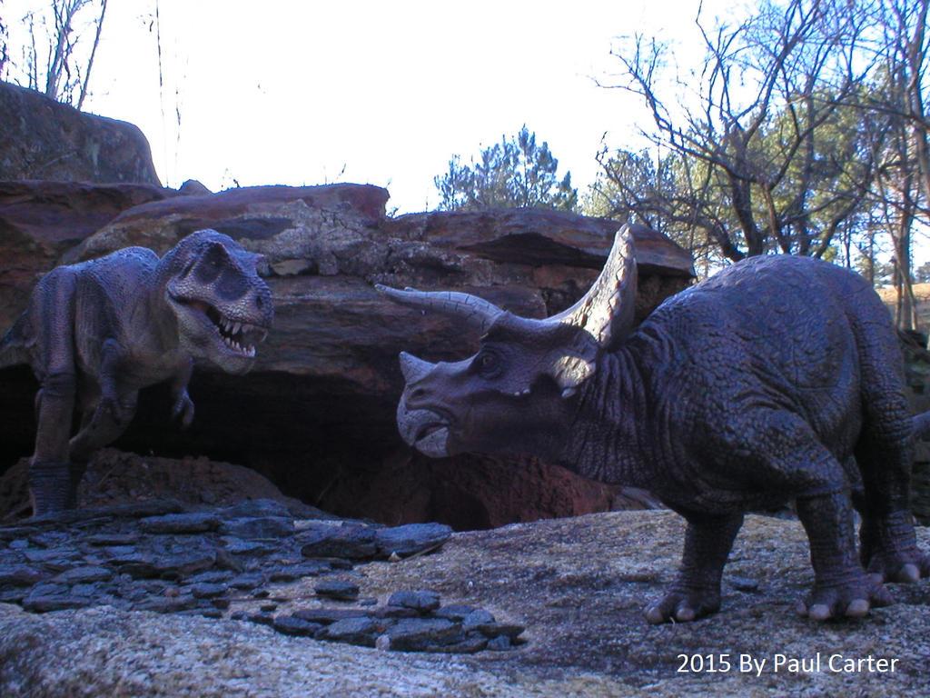 Tyrannosaurus Rex Vs Triceratops. by Carnosaur on DeviantArt T Rex Vs Triceratops Fighting