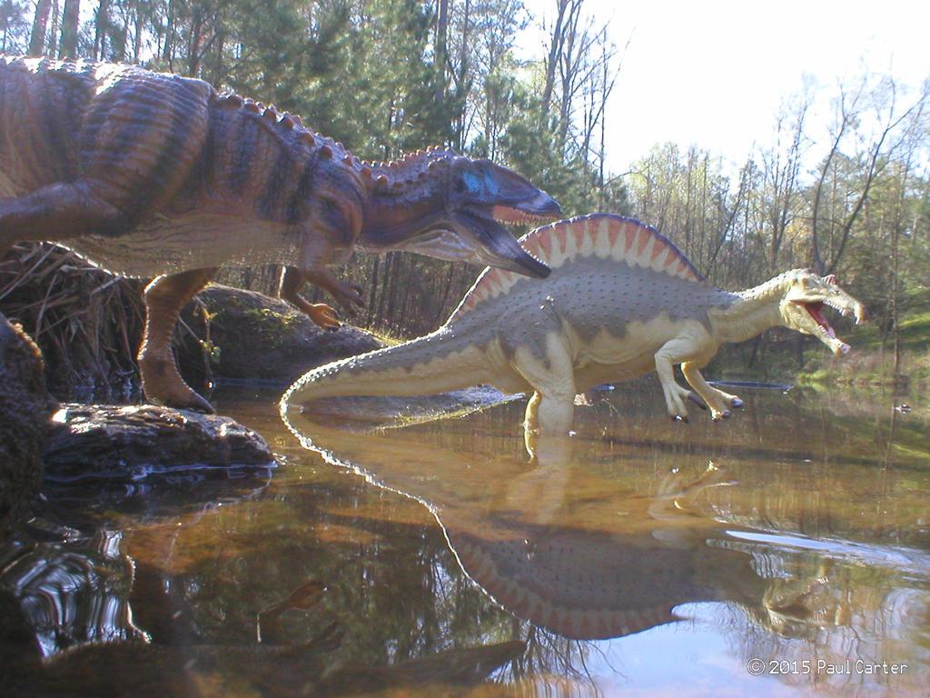 carcharodontosaurus vs spinosaurus by carnosaur on deviantart. Black Bedroom Furniture Sets. Home Design Ideas