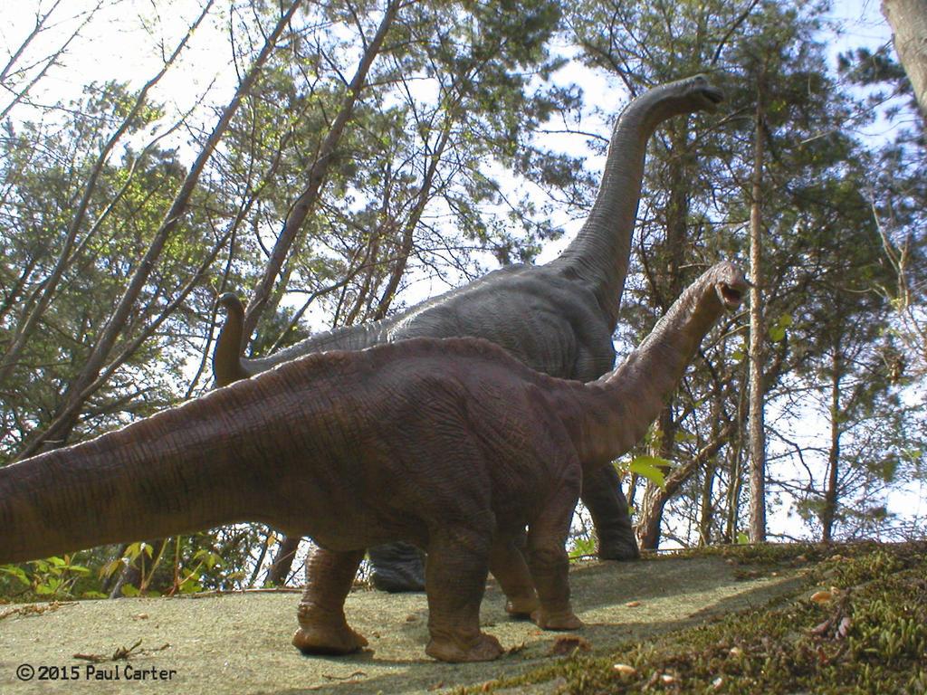 Apatosaurus and Brachiosaurus by Carnosaur on DeviantArt