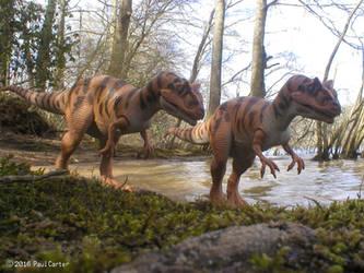 Allosaurus by Carnosaur