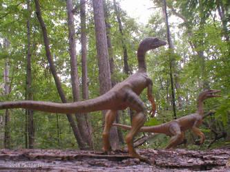 Compsognathus. by Carnosaur