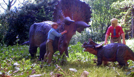Allen's favorite dinosaur. by Carnosaur