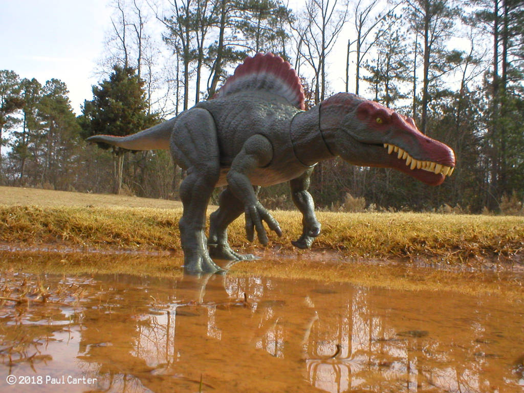 Spinosaurus by Carnosaur