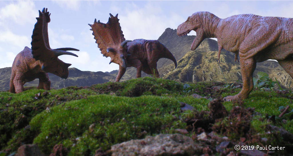 Pentaceratops vs Bistahieversor by Carnosaur