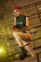 Cammy White  by Freia-Raven