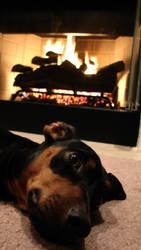 Hot Dog by loirn