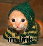 Me kitten by Liyozaki