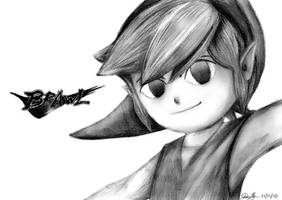 Toon Link Brawl V2 by watermeloons
