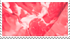 Meat Stamp by CasinoVision