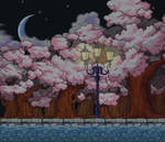 Cherry Blossom Night Path Custom Background